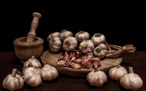 pistil, garlic, still life, mortar