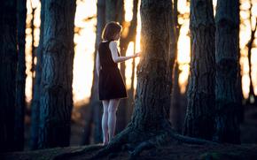 chica, bosque, soledad