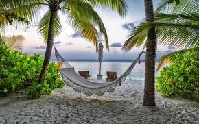 отдых, лето, Мальдивы, пляж, курорт, гамак, пальмы