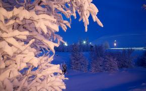 зима, ночь, огни, деревья, пейзаж