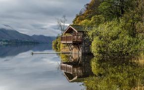 озеро, домик, мостик, деревья, пейзаж