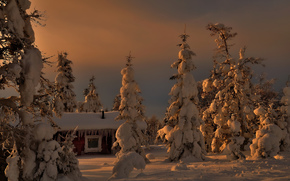 елки, зима, домик, деревья, снег