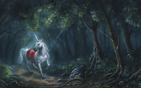 Fantasy, horse, forest, horn, Art, unicorn, white
