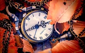 осень, циферблат, часы, листья, стрелки