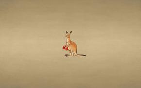 animal, insightful look, dusky background, boxing gloves, kangaroo, minimalism