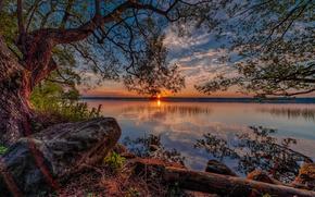 landscape, nature, lake, sunset, tree, stones, reflection