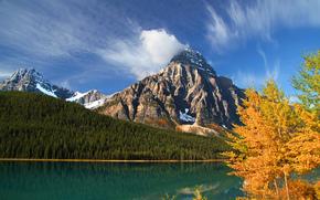 осень, Канада, лес, Альберта, озеро, горы, Банф, деревья