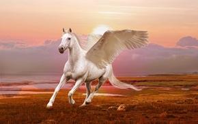 крылатый конь, пегас, 3d, art