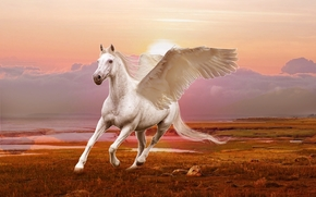 winged horse, Pegasus, 3d, art