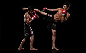 fighters, Mixed Martial Arts, rack, black background
