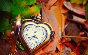 осень, листья, часы, циферблат, сердце, стрелки