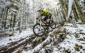 bike, Race, Sport