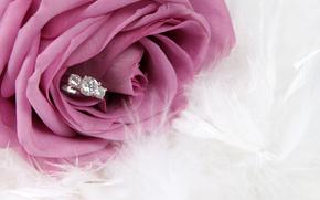 flower, ring, rose