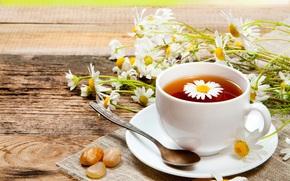 Chamomile, mug, drink, saucer, scoop, tea, Flowers
