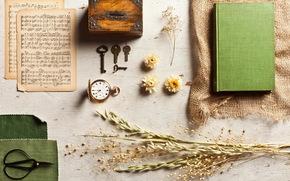 watch, keys, items