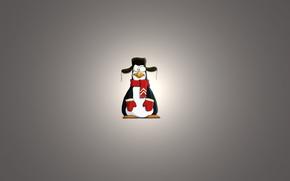 penguin, Scarf, light background, hat with ear flaps, varyushki, minimalism