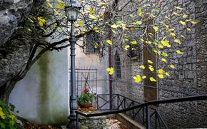 lantern, autumn, home, tree, patio, city