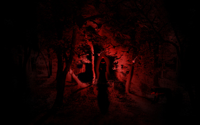 witch, night, horror, forest, light