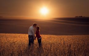 girl, field, guy, bokeh, SPACE, sun, Love