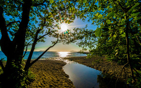 lake, trees, sun, Rays, landscape