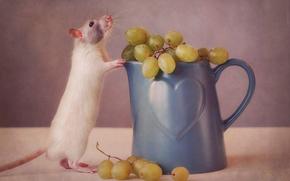 mug, topo, uva