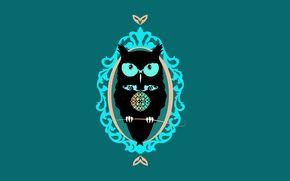 owl, minimalism, bird