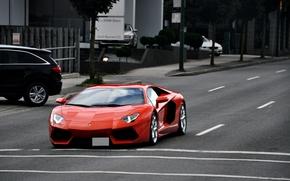 Lamborghini, улица, Ламборгини, оранжевый, разметка, дорога, автомобили, авентадор, свет фар, деревья