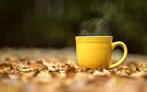 обои, широкоформатные, пар, желтая, горячий чай, настроения, фон, чашка, осень, кружка, размытие, листья, листочки, полноэкранные, широкоэкранные, желтые, макро