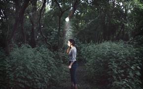 女の子, ランプ, 森