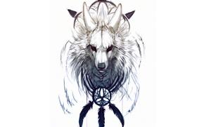Dreamcatcher, cane, piumaggio, sfondo bianco