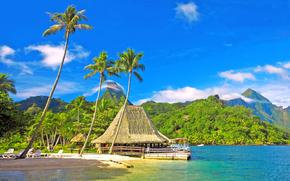 Montagne, capanna, bungalow, Palme, ricreazione, cielo, mare, vacanza, nuvole, Colline