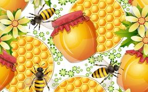 honey, TEXTURE, Bees