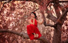 sull'albero, Red Dress, ragazza