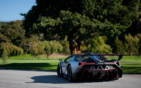Lamborghini, Supercar, Vista posterior, naturaleza