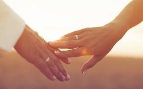 sole, fullscreen, toccare, sfondo, carta da parati, marito e moglie, tenerezza, bokeh, ragazza, ragazzo, sposi, Giorno, mani, sposi, Anello, Widescreen, Widescreen, Mood