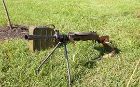 gun, manual, of infantry, grass, Degtyareva, weapon