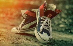 кеды, боке, обувь