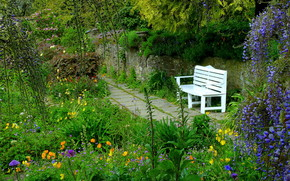 giardino, parco, traccia panchina, Fiori, natura