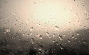 pioggia, Macro, gocce, primo piano, perspektika