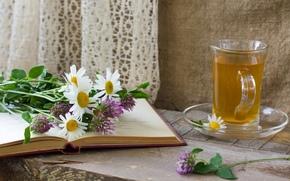 saucer, Chamomile, tea, book, onions, Flowers, allium, cup
