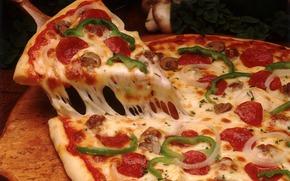 болгарский перец, пицца, грибы, сыр, колбаса, помидор, лук, блюдо, оливки, итальянская кухня