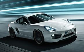 Caimano, Porsche, Porsche, Frontale, sfondo, sintonizzazione