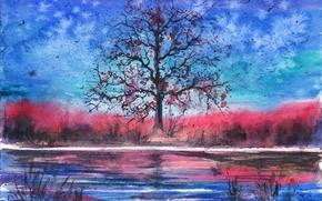 река, акварель, вечер, дерево, нарисованный пейзаж, птицы