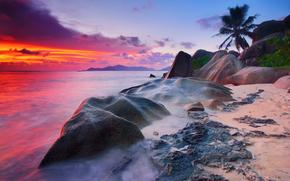 alberi, Oceano Indiano, sera, spiaggia, cielo, pietre, cespuglio, mare, nuvole, mattinata, l'isola di La Digue, esposizione, Rocce, acqua, Palme, Seychelles