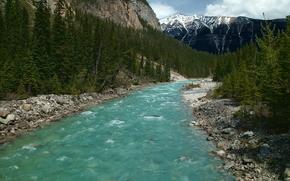 Promenade des Glaciers, Canada, Montagnes, rivière, arbres, paysage