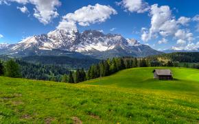 Italy, Latemar Mountains, горы, холмы, поле, деревья, домик, пейзаж