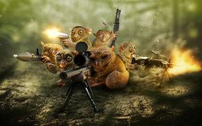 defense, pygmy lorises, sniper, background, weapon