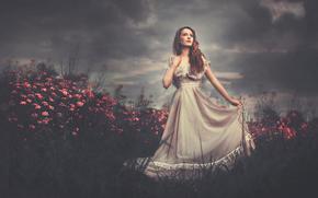 Flowers, dress, field, girl