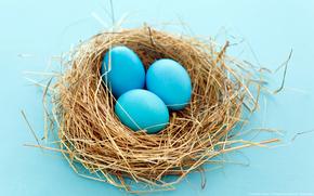 Разное, яйца, фольклёр, настроение