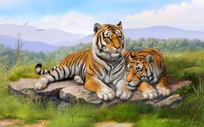 painting, Tigers, grass, stones, lie